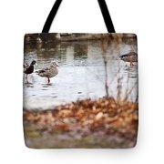 Waterfowl Calisthenics Tote Bag