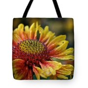 Waterlogged Arizona Apricot Tote Bag