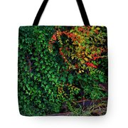 Watershed Park Foliage Tote Bag