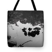 Watery Reflections Tote Bag