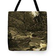 Watkins Glen In Orotone Tote Bag