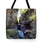 Watkins Glen Spring One Tote Bag