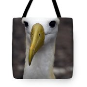 Waved Albatross Portrait Tote Bag