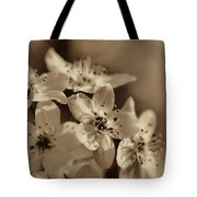 Waves Of Light In Sepia Tote Bag