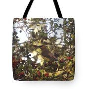 Wax Wing In A Berry Tree  Tote Bag