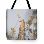 Wax Wing In Sunshine  Tote Bag