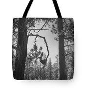 We Two Tote Bag by Laurie Search