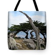 Weathered Tree On California Coast Tote Bag