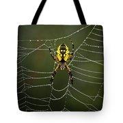 Weave Master Tote Bag