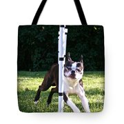 Weave Pole Wonder Tote Bag