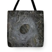 Web Of A Funnel-web Spider Tote Bag