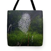 Web Over Foggy Lake Tote Bag