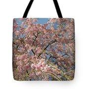 Weeping Cherry Tree In Bloom Tote Bag