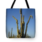 Weird Giant Saguaro Cactus With Blue Sky Tote Bag