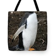 Welcome From A Gentoo Penguin Tote Bag