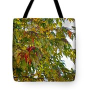 Welcome Sight Tote Bag