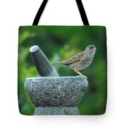 Well Grounded Tote Bag