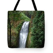 Well Placed Waterfall Tote Bag