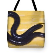 West African Caecilian Tote Bag