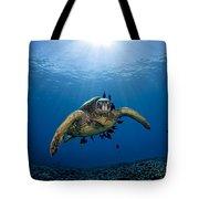 West Maui Sea Turtle Tote Bag