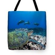 West Maui Sea Turtles Tote Bag