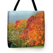 West Virginia Maples 2 Tote Bag