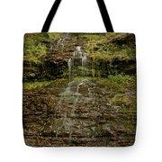 West Virginia Waterfall Tote Bag