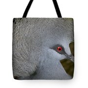 Western Crowned-pigeon Goura Cristata Tote Bag