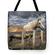 Western Palomino Horse In Alberta Canada No.1335 Tote Bag