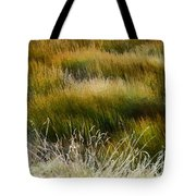 Wet And Dry Tote Bag