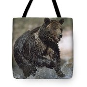 Wet Grizzly Bear Running In Stream Tote Bag