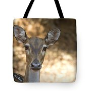 Wet Nose Tote Bag