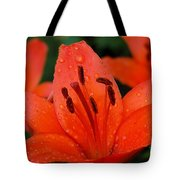 Wet On Red Tote Bag
