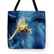Wet Paws Tote Bag by Jill Reger