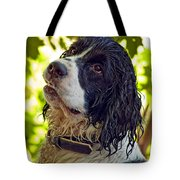 Wet Puppy Tote Bag