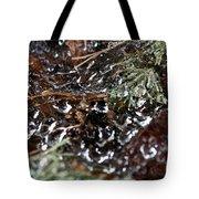 Wet Web Tote Bag