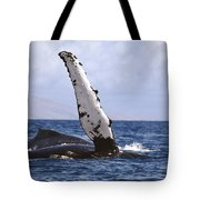Whale Fin Above Water Tote Bag