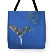 Whale Shark Tail Near Surface With Sun Tote Bag