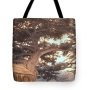 Whaler's Cabin Tote Bag