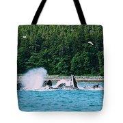 Whales Bubble Net Feeding Tote Bag