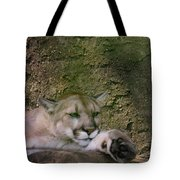 What A Paw Tote Bag