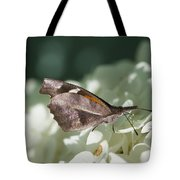 What A Schnoz On That American Snout Butterfly Tote Bag