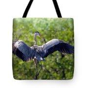 What A Wingspan Tote Bag