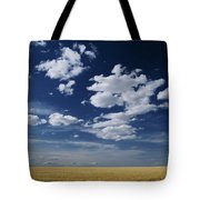 Wheat Field, Central Washington Tote Bag