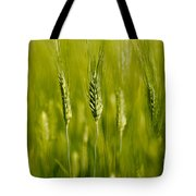 Wheat On The Field Tote Bag