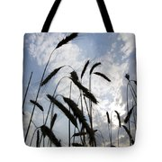 Wheat With Blue Sky Tote Bag