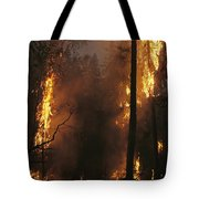 When Flames Crown Into Treetops Tote Bag