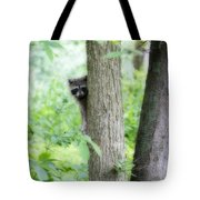 When Raccoon Dream Tote Bag