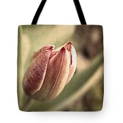 When The Sun Comes Out Tote Bag