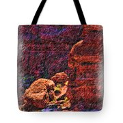 Where Are We Tote Bag